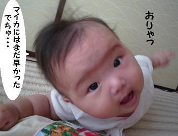 maika09196.jpg