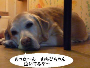 maika092410.jpg