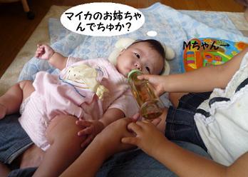 maika09264.jpg