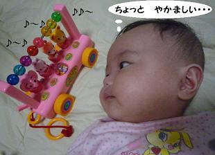 maika10082.jpg