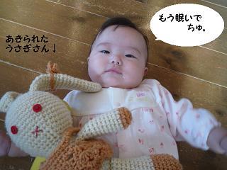 maika10104.jpg