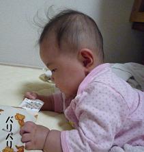 maika10152.jpg
