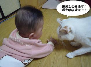 maika10192.jpg