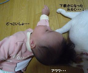 maika10194.jpg