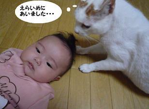 maika10195.jpg