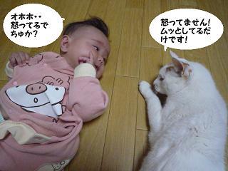 maika10196.jpg