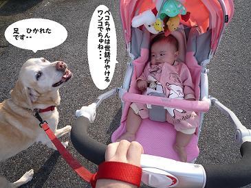maika10212.jpg