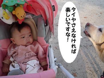 maika10215.jpg