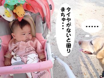maika10216.jpg
