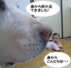 maika10262.jpg