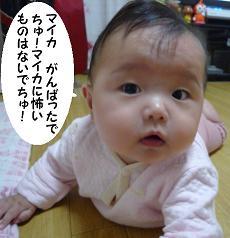 maika10281.jpg