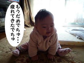 maika11012.jpg