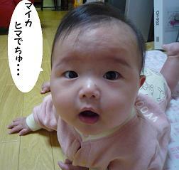 maika11021.jpg