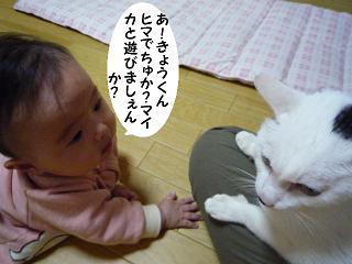 maika11022.jpg