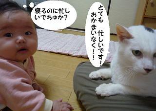 maika11023.jpg