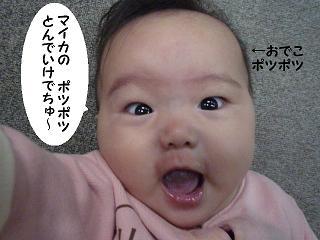 maika11041.jpg