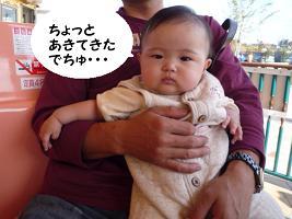 maika11053.jpg