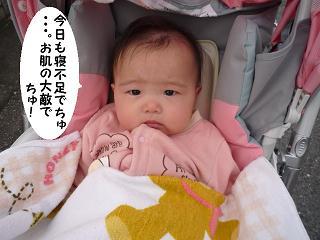 maika11111.jpg