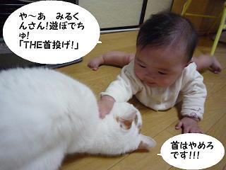 maika11131.jpg