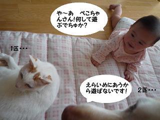 maika11142.jpg