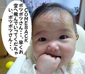 maika11171.jpg