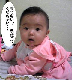 maika11281.jpg