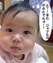 maika12121.jpg