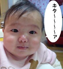 maika12122.jpg