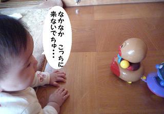 maika12213.jpg