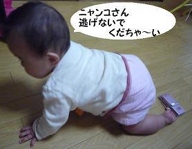 maika12251.jpg