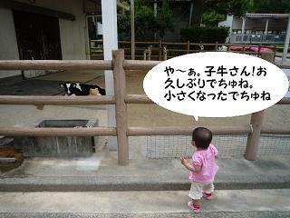 maika2105262.jpg