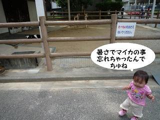 maika2105264.jpg