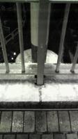 雪が積もる路上
