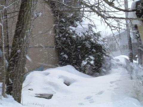 吹雪08年1月31日