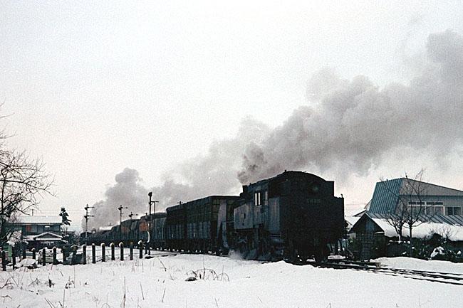 nishiwakamatsu4.jpg