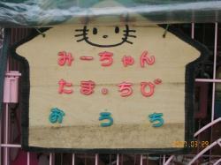 07_3_29nekoekityou3.jpg