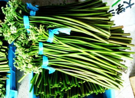 天然山菜:わらび(ワラビ・蕨)は煮付け・ワラビ飯・納豆あえ・おひたしで美味しい