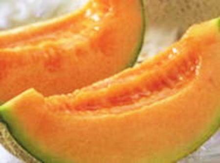 メロン・めろん・三笠(みかさ)メロン・melon