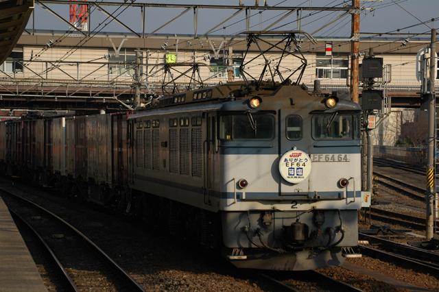 DSC_8916.jpg