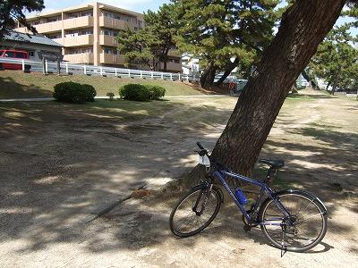 武庫川サイクリングロードその2