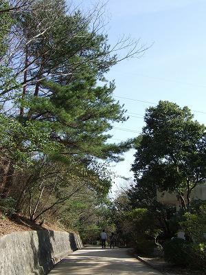 甲山森林公園その4