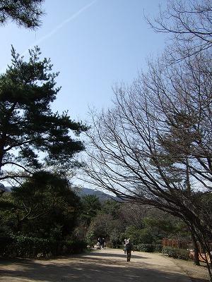 甲山森林公園その5