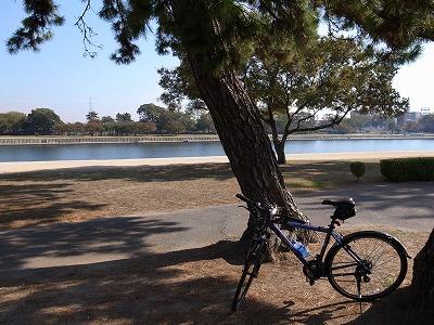 武庫川サイクリングロードその1