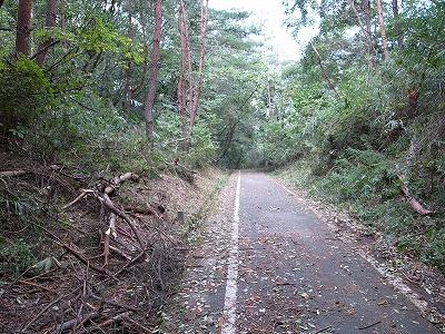 奈良自転車道その4