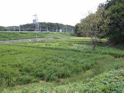 奈良自転車道その5