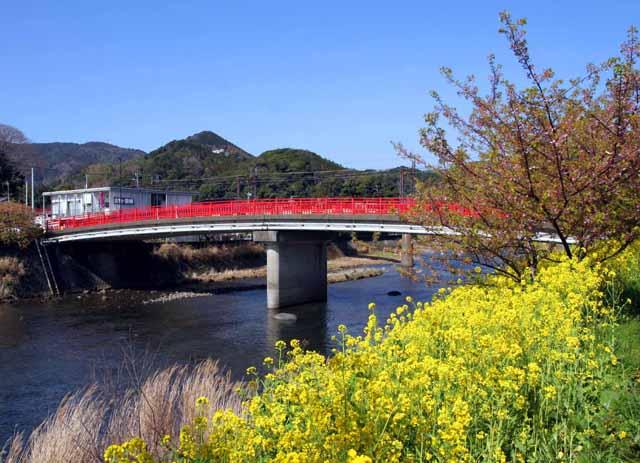 higashizu24
