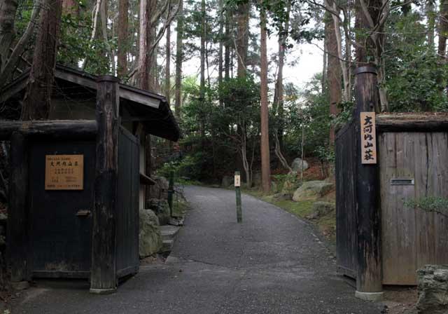 嵯峨野の竹林5
