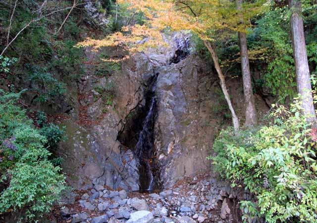 ooyama49