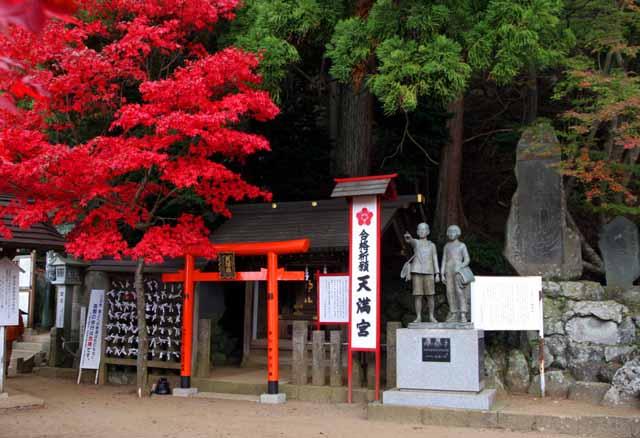ooyama19