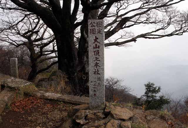 ooyama38